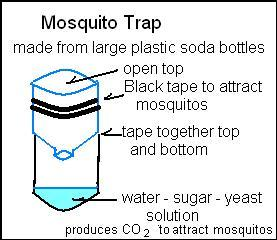 Homemade Mosquito Traps Without Yeast Homemade Ftempo